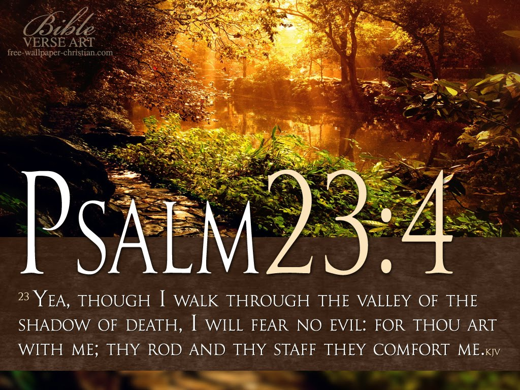 Inspirational Bible Quotes Psalm 23 : 4