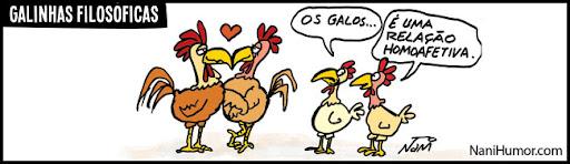 As galinhas filosóficas. relação homoafetiva