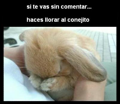 SI NO COMENTAS, EL CONEJITO LLORA