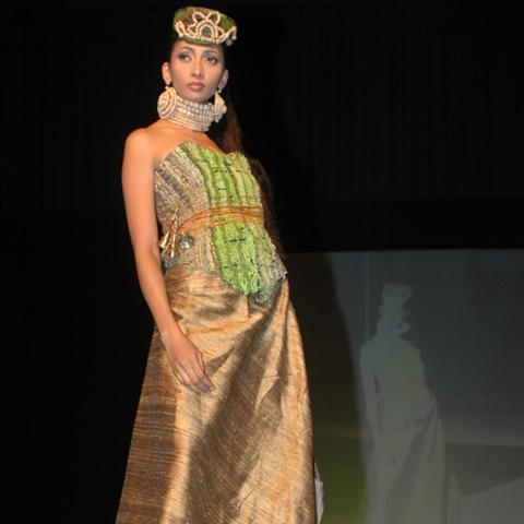 100 years of Bihar, Silks of Bihar, fashion show