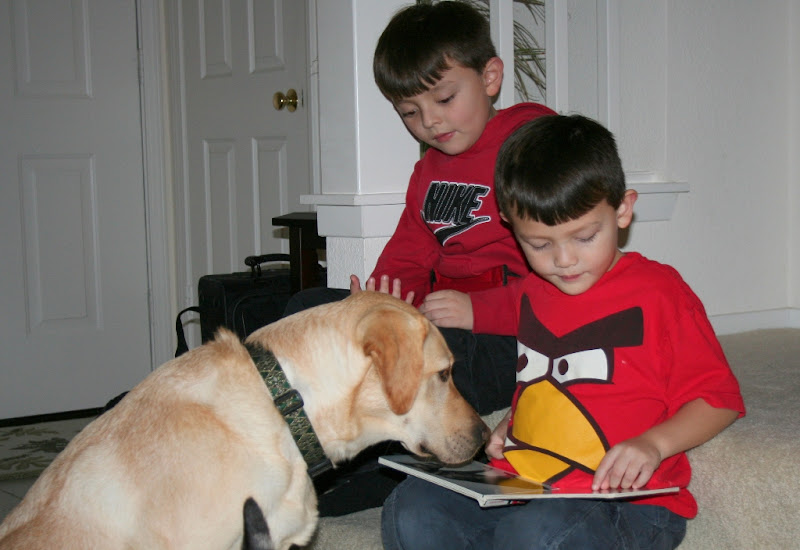 two brown haired boys with bowl cuts, sitting on the stairs of our house, cabana in front of them, as they read a book to her