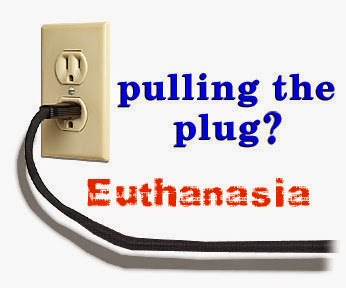 understanding the subject of euthanasia or mercy killing