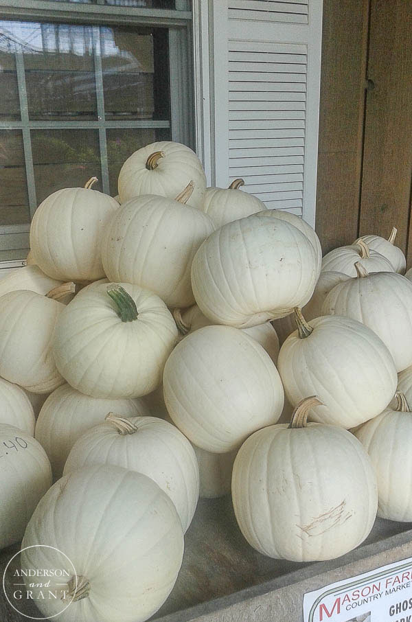Stack of White Pumpkins at Farmer's Market