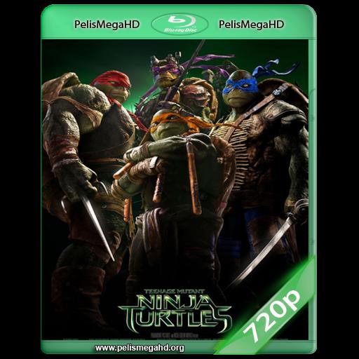 TORTUGAS NINJA (2014) WEB-DL 720P HD MKV INGLÉS SUBTITULADO