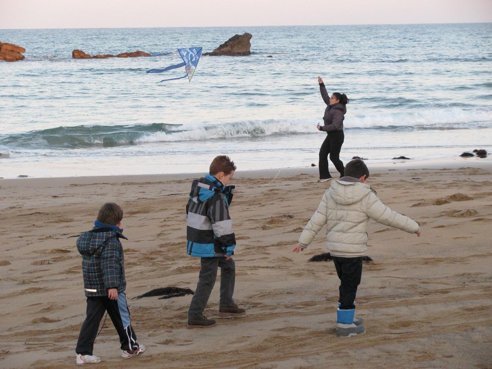 Resultado de imagen para volar cometas en la playa