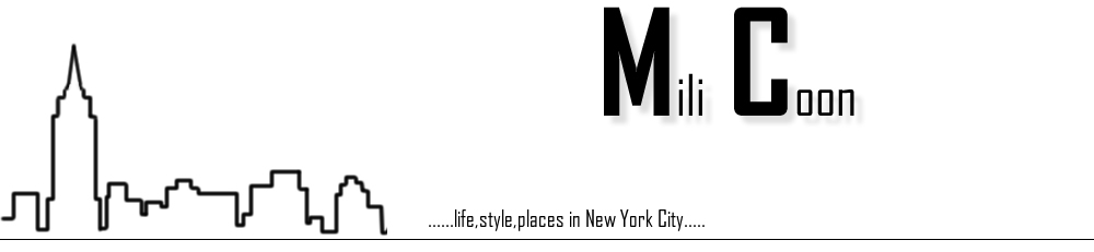 Vivere a New York -  A Life in New York