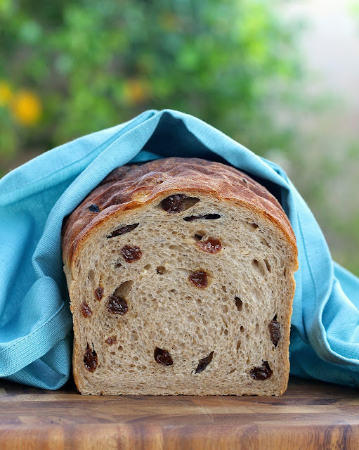 Cinnamon Raisin Oatmeal Bread
