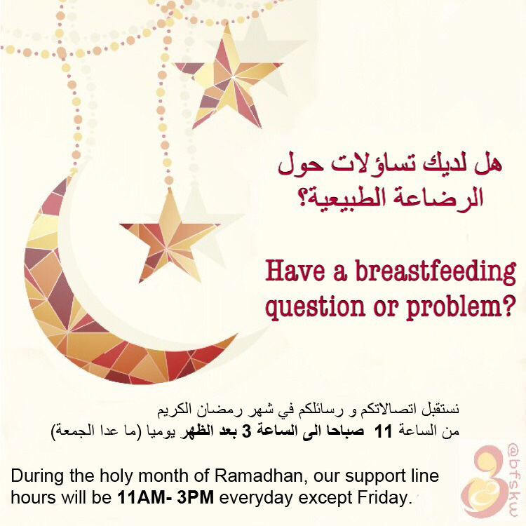 The Breastfeeding Support Program