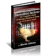 Incredible Chickens