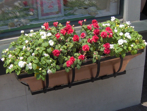 Container garden tips the fancy flora for Flower garden box ideas