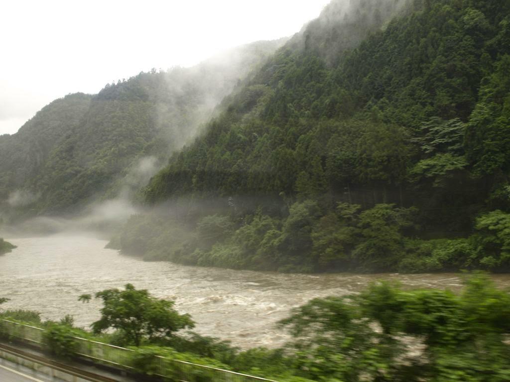 Un rio con neblina