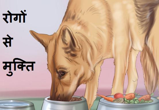 Acche Svasthya ke Tips