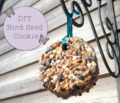 DIY Bird Seed Cookies from Butterfly Crafts