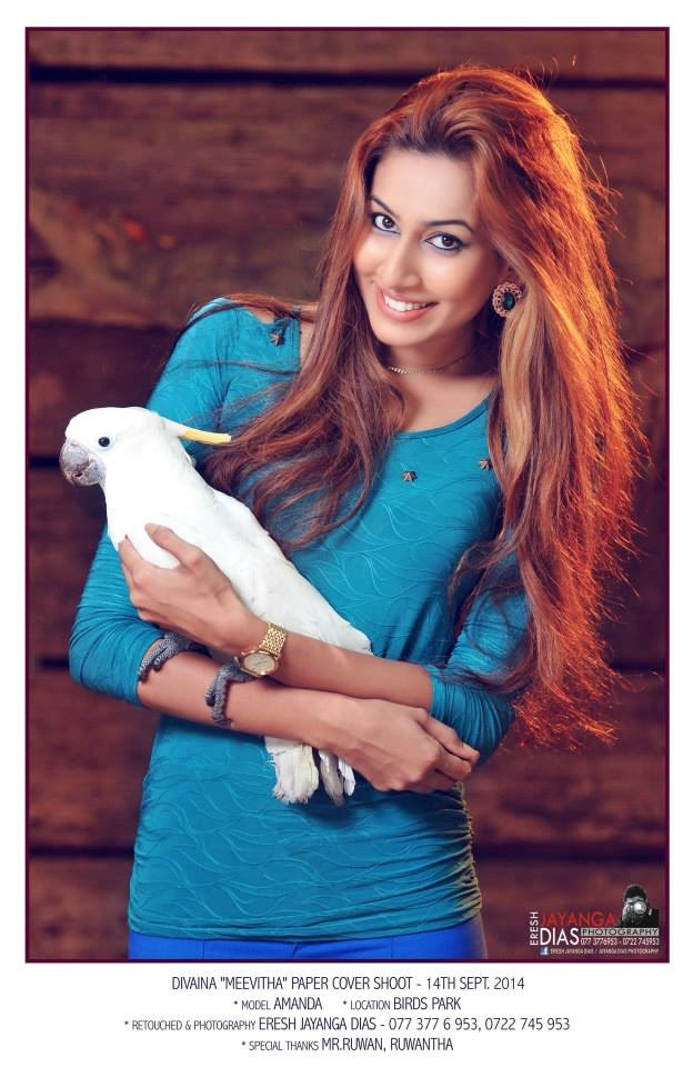 Amanda Nilukshi parrot