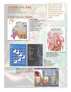 Catherine Twomey LLC, ArtistsArt LLC, Medical Illustration