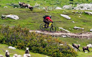 Mountain Cycling Himachal Pradesh