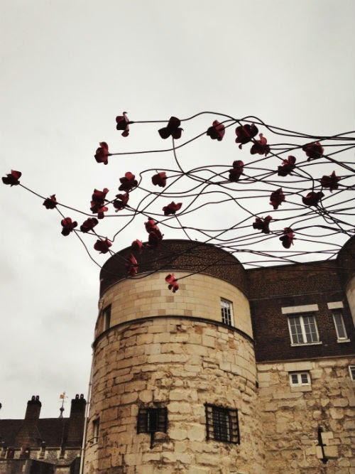 The Tower of London Poppies