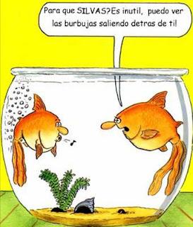 pez se tira pedos