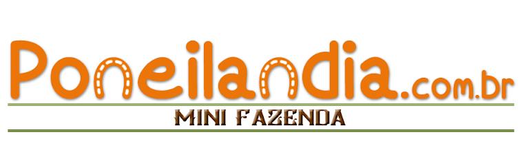Poneilandia - Mini Fazenda - Fazendinha