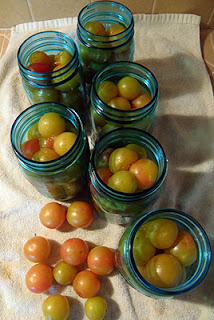 Plums Packed into 6 Jars, with 10 Plums Left Out