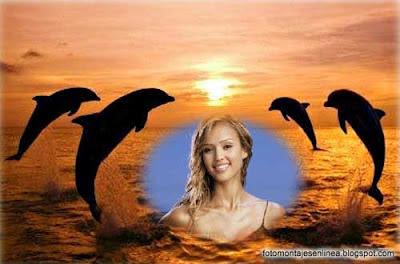 fotomontaje online delfines