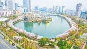 เทศกาลซากุระทะเลสาบซอกชน