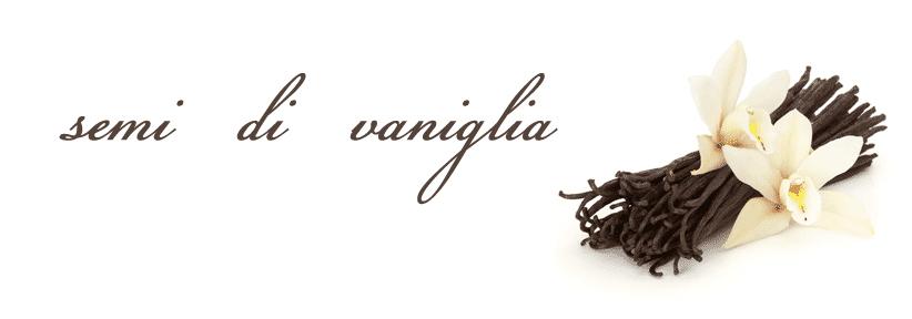 semi di vaniglia