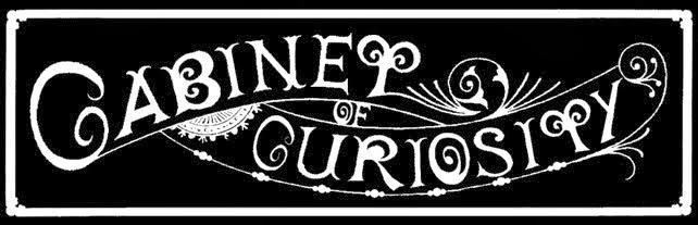 CABINET OF CURIOSITY STUDIO BLOG