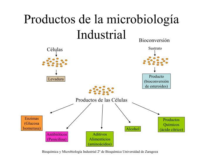 Microbiología: 2015