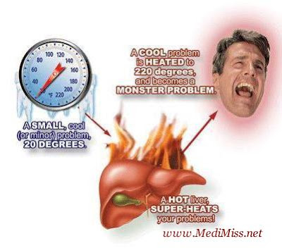 The main causes of liver damage are