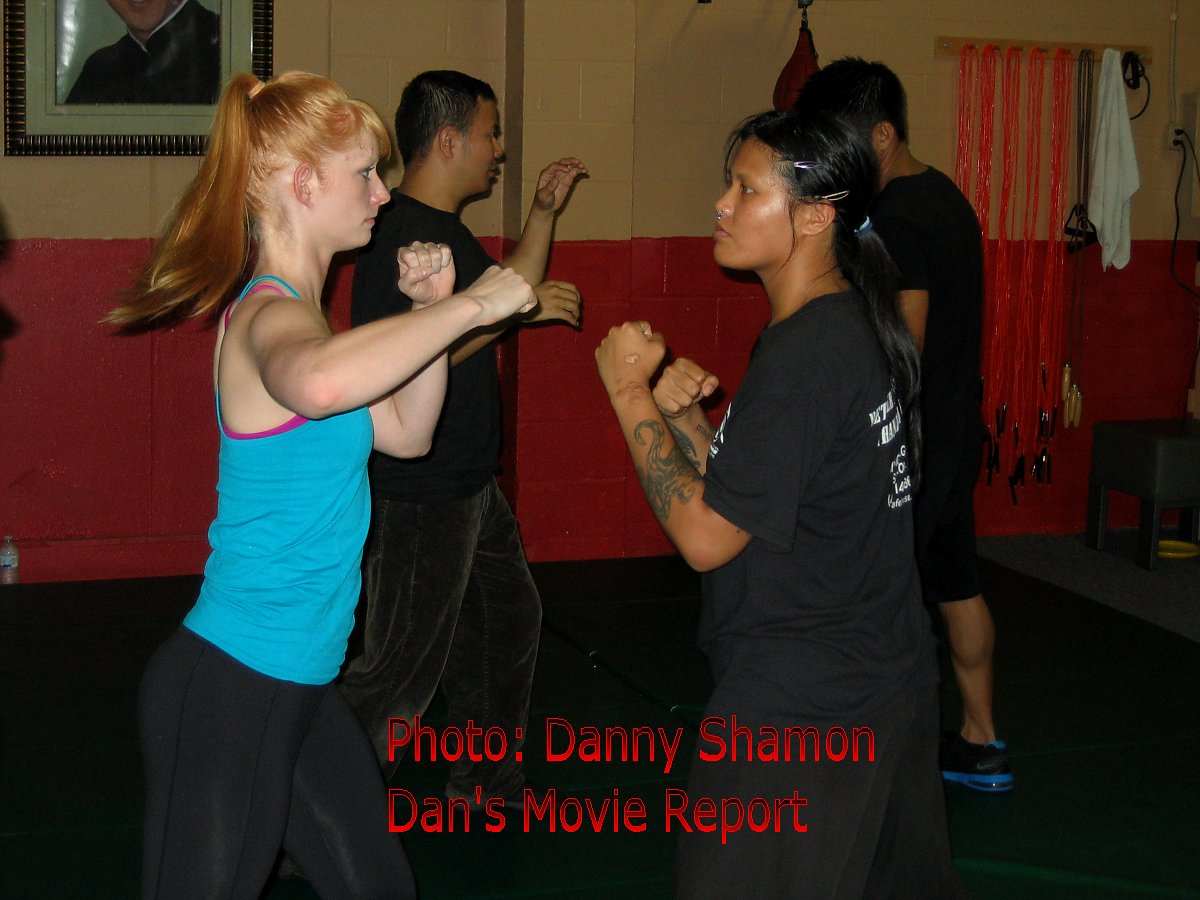 Cynthia Rothrock Movies