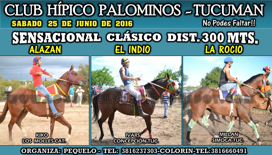 25-06-16-HIP. PALOMINOS-CLAS.1