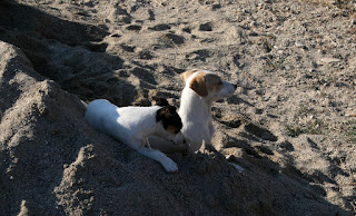 Girls on their personal beach