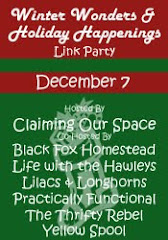 Winter Wonders and Holiday Happenings Link Party