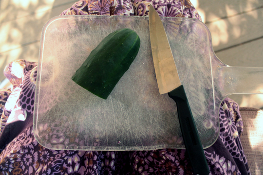 Cucumber side prepared to cut