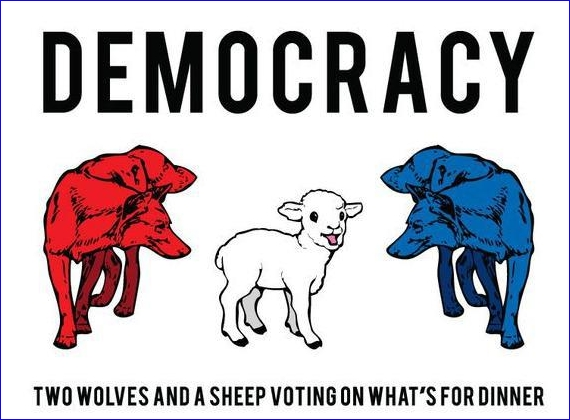 democracy two wolves and a sheep 