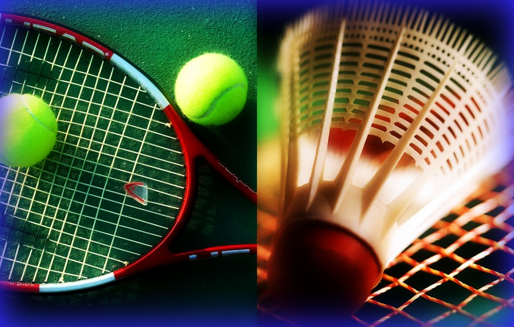 Essay on badminton game