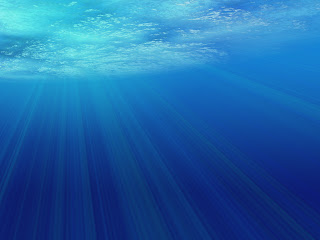 Rays Underwater wallpaper