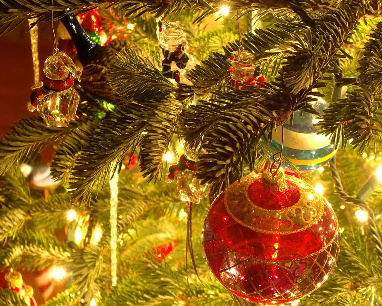 http://1.bp.blogspot.com/-HnpRLC30OQs/TvYJKvhaxzI/AAAAAAAAAG8/v0WkOqNGmZE/s1600/35-Christmas-wallpapers-free-red-christmas-ball-hanging-in-tree-wallpaper.jpg