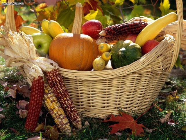 Autumn Harvest Desktop Wallpapers5