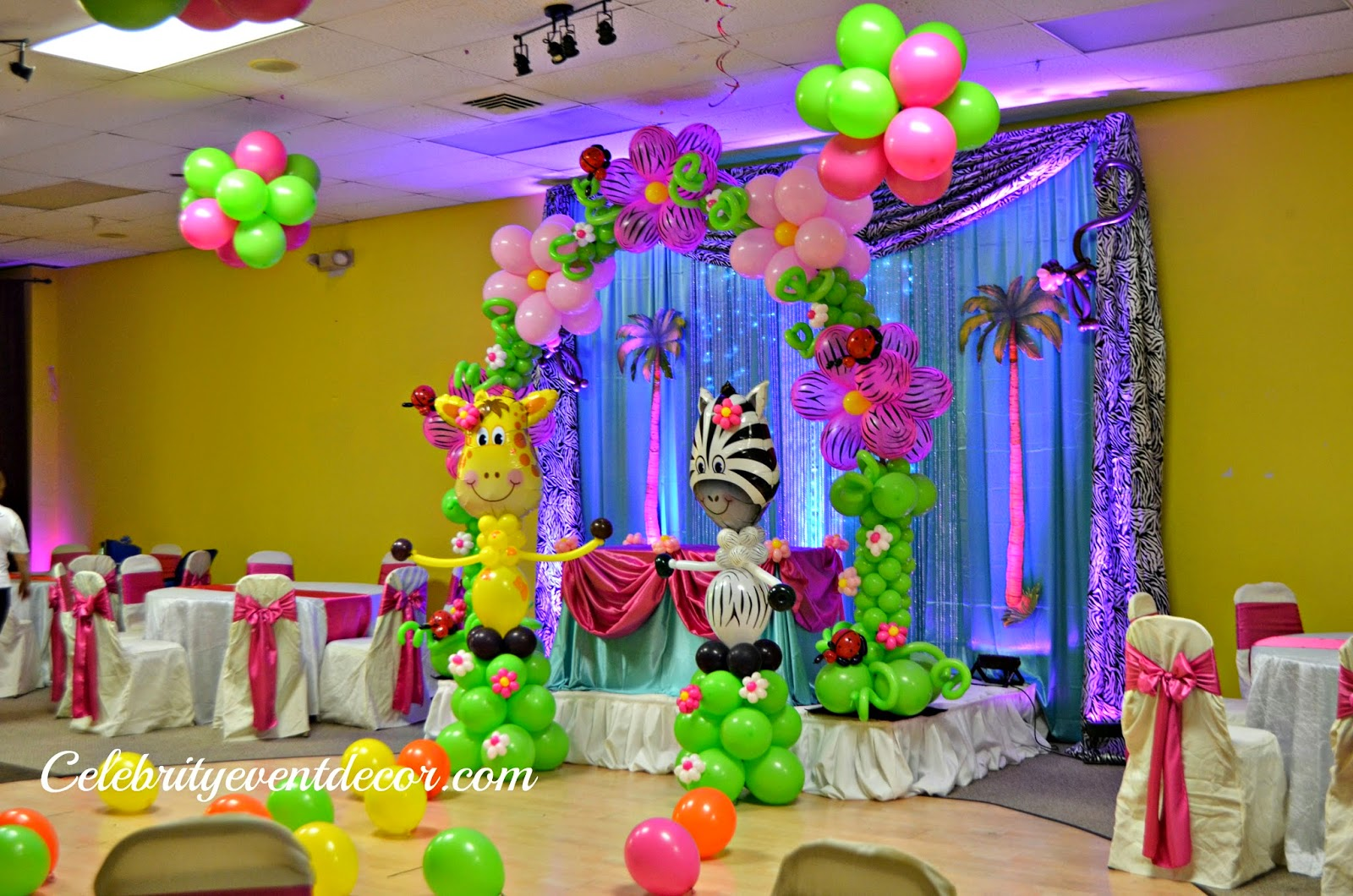 Celebrity event decor banquet hall llc for Baby shower hall decoration