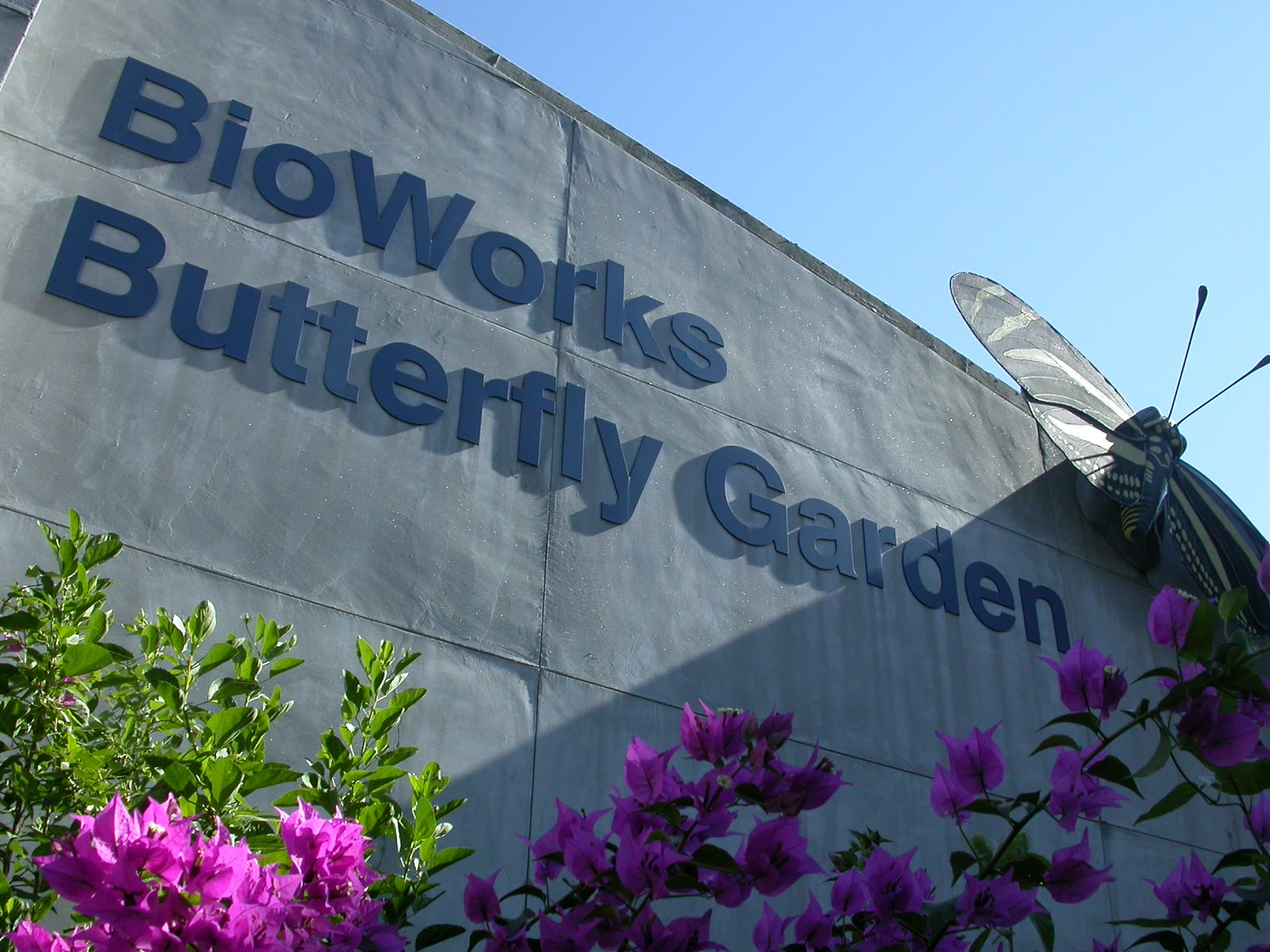 Ordinaire BioWorks Butterfly Garden And Flight Encounter Exhibit