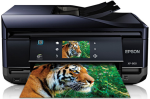 Epson Expression Premium XP-800 Printer  Driver Download
