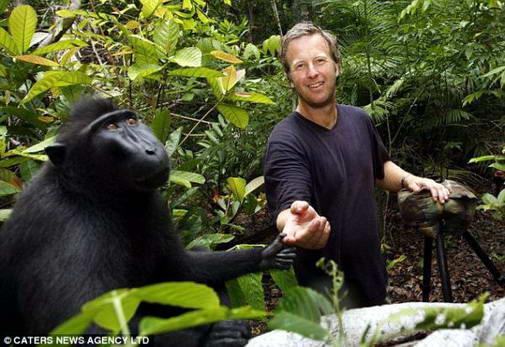 foto monyet lucu, hewan yang dilindungi, gambar hewan kocak dan aneh, kumpulan foto unik dan gokil