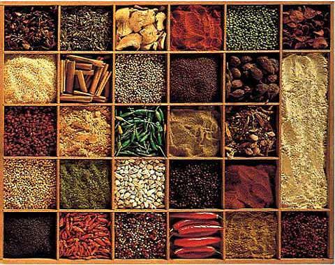 Saucir de cocina alimentos perecederos semi perecederos - Especias para la cocina ...