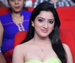 Richa Panai  Stills At Cine Maa Mahila Ads 2013 93.jpg