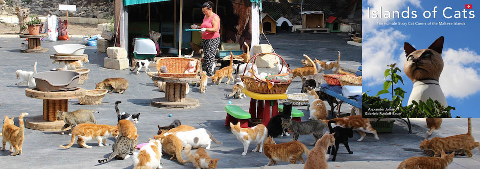 Malta - Islands of Cats