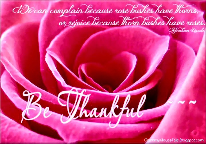 Lincoln quote- complain or rejoice quote image- be thankful - pink rose image