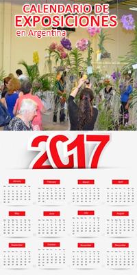 Calendario 2017 completo