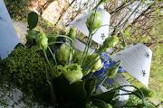 c' è qualcosa di straordinario nell'allestire coi fiori. (img )